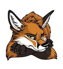 STUCK Grumpy Fox