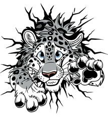 STUCK Snow Leopard