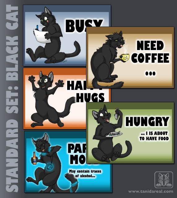 standard-set_cat-black