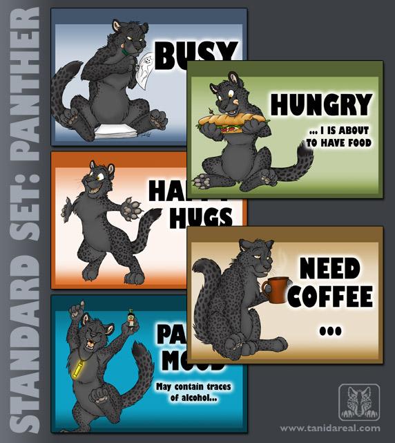 standard-set_panther