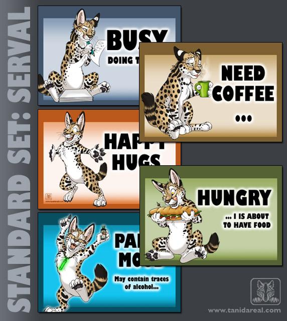 standard-set_serval